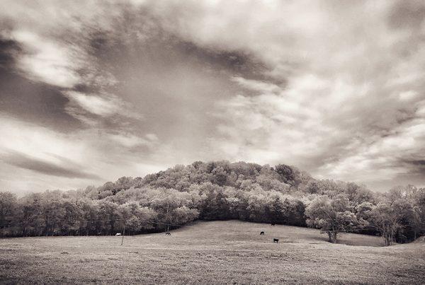 K. Randall Wilcox Fine Art Photography